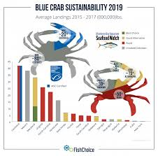 Md Crab Size Chart Blue Crab Fishchoice