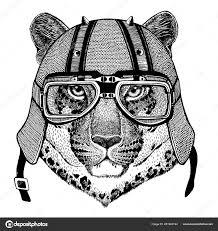 леопард ягуар дикий кот пантера носить мотоцикл аэро шлем руки