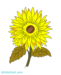 Small Picture Sunflower Coloring Pages for Kids to Color and Print