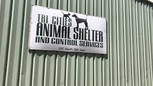 Animal shelter sees influx of pets over holiday weekend   KEPR
