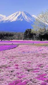 65-Japanese-Scenery-Wallpapers-on ...