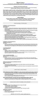 Litigation Attorney Resume Samples Templates Tips Attorneyresume Com