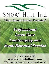 Lawn Mowing Ads Lawn Care Service Alfred Almond Hornell Ny Snow Hill Inc