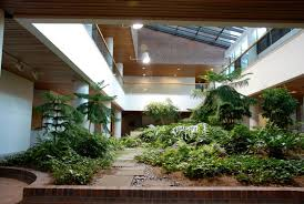 breathtaking courtyard indoor garden landscaping design performing fertile green plants with stone steps and perfect ceiling lighting ideas