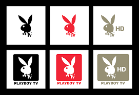 Playboy TV · Brand Identity on Student Show