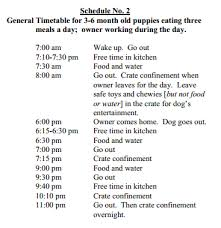 Puppy Bathroom Chart Housebreaking A Puppy A Time Proven Potty Training Routine