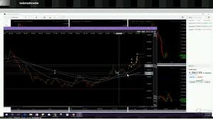 Live Forex Trading Rooms Tailored Trader Live Forex Trading Forex Learning Courses