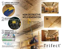 mold mitigation cost. Delighful Mitigation Trifect Mold Removal Brochure Page 2 In Mold Mitigation Cost M