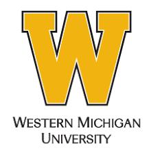 Logo Requirements | Visual Identity Program | Western Michigan ...