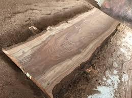 11 foot natural edge walnut bar top