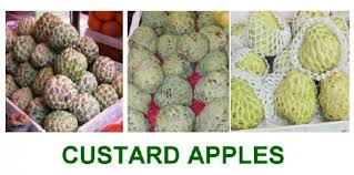 Information About Custard Apples Delishably