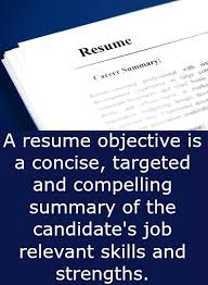 Resume Career Objective Statement Classy It Resume Objective Statement R Quickplumberus