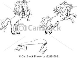 Tatuaggio Cavallo Set Adesivo Unicorno Tatuaggio Cavallo Set