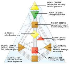 Human Design Chart The Nine Centersthe Nine Centers Are Represented By Nine