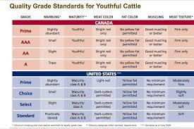 Canadian Beef Grading Chart