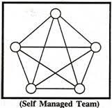 self managed teams teams importance types and other details with diagram