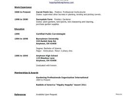 Examples Of Teenage Resumes For First Job La Lit Com Student Cv