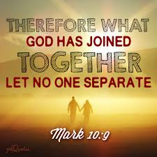 Image result for let no man separate what God has united christ