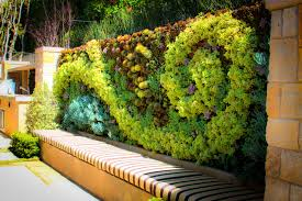 Living Walls Green Plant And Vertical Garden Walls Furniture How To Make A Living  Wall