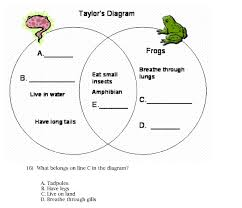 Difference Between Amphibians And Reptiles Venn Diagram Experience Learn Educational Media Describing Images