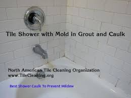shower sealant tape best mold and mildew images on best shower caulk to prevent mildew of shower sealant