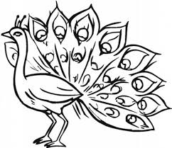 Small Picture Of Peacock Coloring Page Clipart Panda Free Clipart Images
