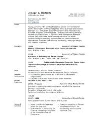 Buy Resume Templates Delectable Resume Sales Examples Basic Resume Template Word Examples Format