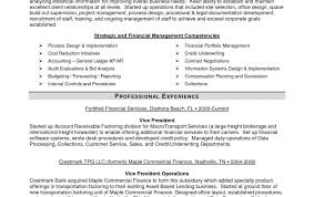Project Management Information System Example Resume Examples