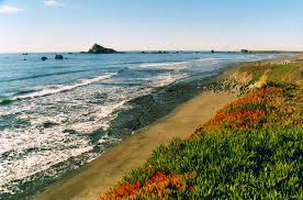 Homes For Sale In Crescent City Ca