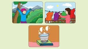 Assalamualaikum wr wb video kali ini saya memberikan tutorial pembelajaran kurikulum 2013 kelas 6 tema 1 selamatkan makhluk hidup subtema 1 pembelajaran 1. Kunci Jawaban Halaman 3 4 6 7 8 9 Tema 6 Kelas 5 Subtema 1 Pembelajaran 1 Suhu Dan Kalor Tribun Pontianak