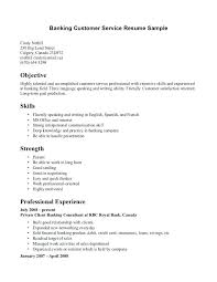 Example Of A Customer Service Resume Adorable Customer Service Resume Examples Sample For Manager Art Galleries In