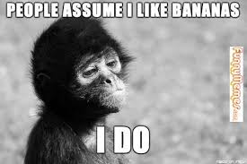 FunnyMemes.com • Animal memes - Self Reflecting Monkey via Relatably.com