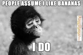 FunnyMemes.com • Animal memes - Self Reflecting Monkey via Relatably.com