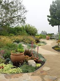 Small Picture Dry Garden Palos Verdes Contemporary Garden Seattle by