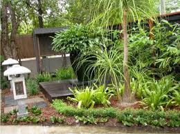 Small Picture Style Ideas Gardens The tropical garden Steven Clegg Design
