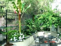 small garden plans for full sun tropical garden plans courtyard garden design ideas small tropical plants