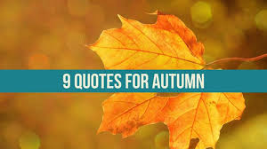 Autumn Quotes Interesting 48 Quotes For Autumn Writers Write