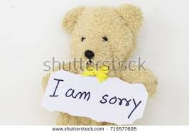 i am sorry message card and teddy bear on background white