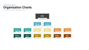 Org Chart Powerpoint Slide Organization Chart Powerpoint Template And Keynote Slide