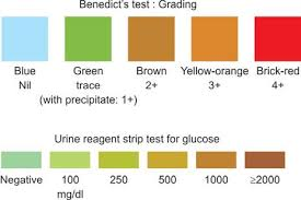 Tests For Detection Of Glucose In Urine