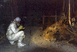 17 best images about chernobyl chernobyl births 17 best images about chernobyl chernobyl births and the fortress