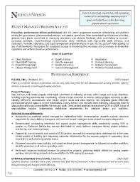 Resumes For Project Managers Project Management Resume Sample Sample