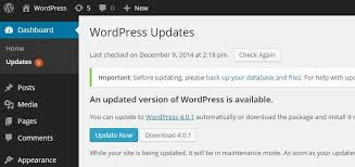 Top tips to prevent a WordPress hack