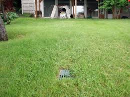 a buried sump pump discharge line in a yard