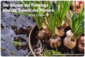 Der Kleine Gartenphilosoph Sprüche Zum Nachdenken Für Den März