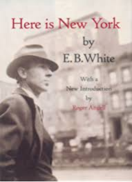 essays of e b white kindle edition by e b white literature  customers who viewed this item also viewed
