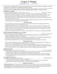 Zenworks Consultant Resume Tomyumtumweb Com