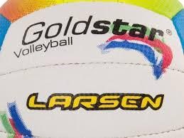 <b>Мяч Larsen Gold Star</b> 220675, цена 42 руб., купить в Минске ...
