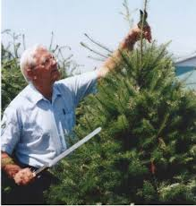 Arthur Loewen working at his Christmas tree farm, Pine Meadows, in  Chilliwack, B.C.