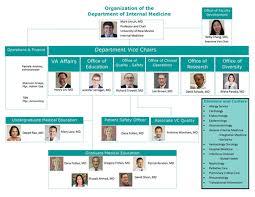The Department Of Internal Medicine Organizational Chart